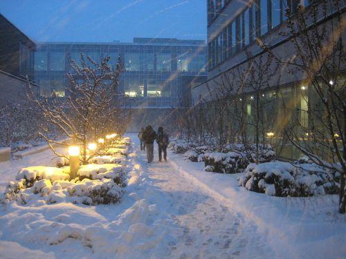 city winter scene